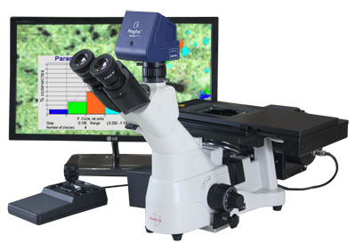 Motorized Microscope